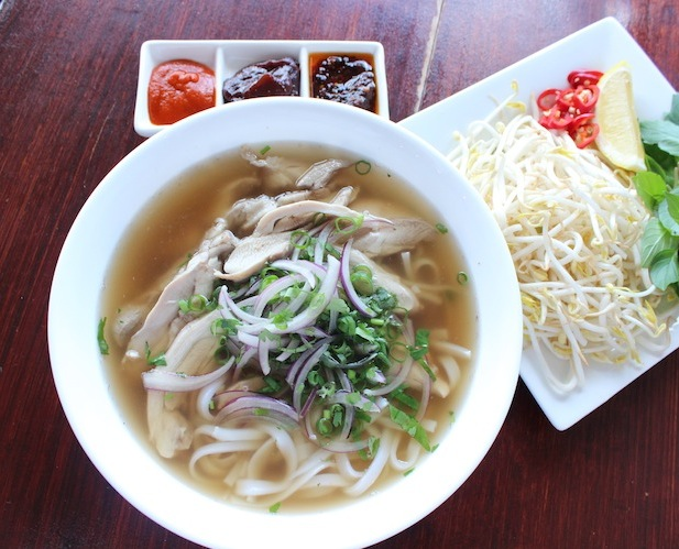 chicken noodle soup (pho)